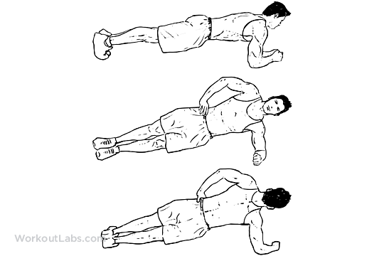 plank-rolls-workout-pic