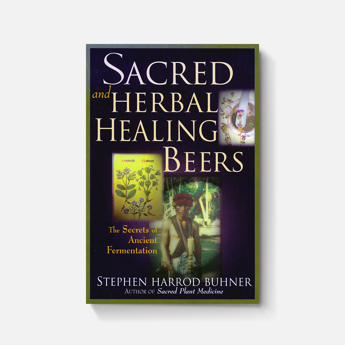 sacred and herbal healing beers pdf