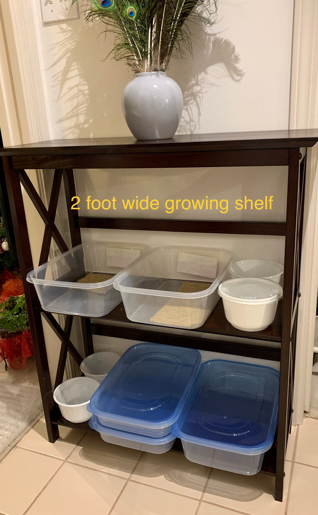 Two foot growing shelf