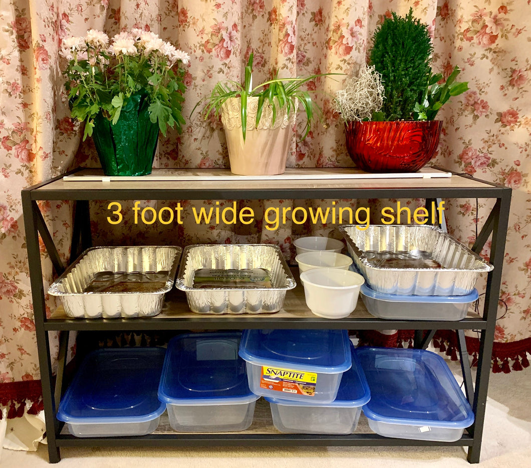 Three foot growing shelf