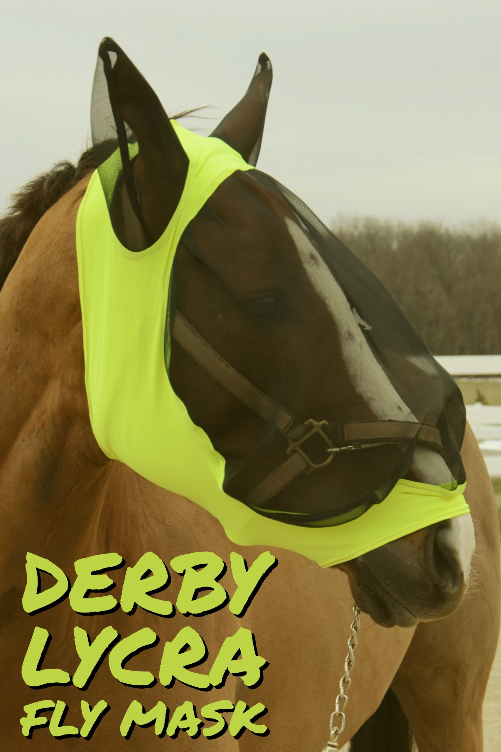 Western Saddle Pads | Derby Originals