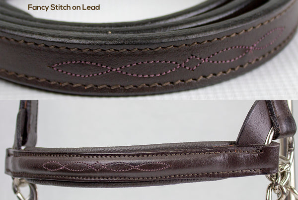 Derby Originals Premium Raised Padded Fancy Stitch Leather Cattle Show Halter with Matching Chain Lead  - One Year Limited Manufacturer's Warranty