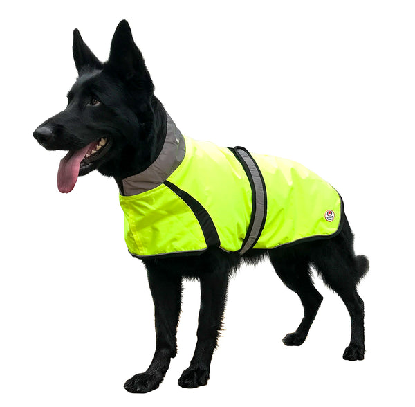 Light Up LED Waterproof Safety Dog Jacket with Reflective Trim & Belt For Walking, Jogging, Running, Sports, Hiking, Hunting by Derby Originals