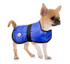 products/80-8064_Chihuahua.png