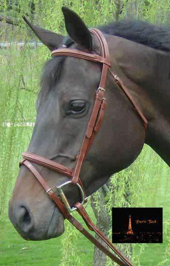 Paris Tack Square Raised Fancy Stitched Leather English Bridle with Removable Flash and Laced Reins