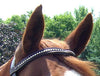 Opulent USA Leather Classic Rhinestone Padded Browband