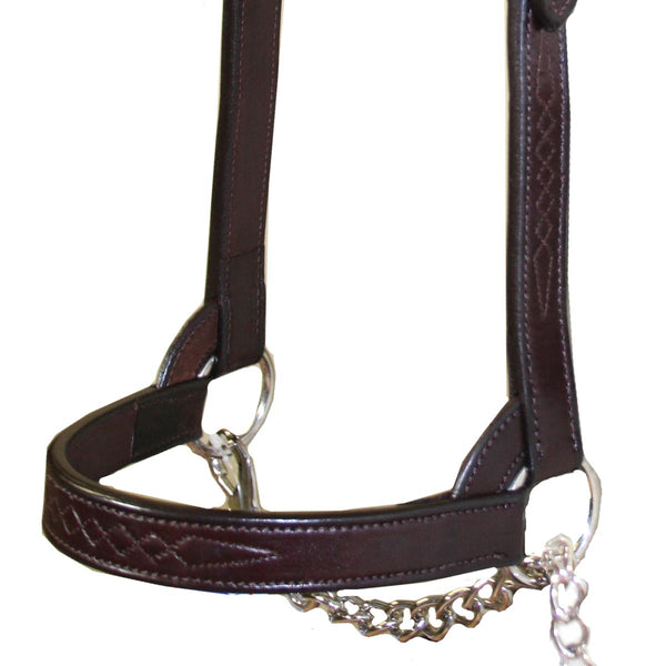 Derby New and Improved Premium Flat Fancy Stitch Leather Cattle Show Halter with Matching Chain Lead - One Year Limited Manufacturer's Warranty