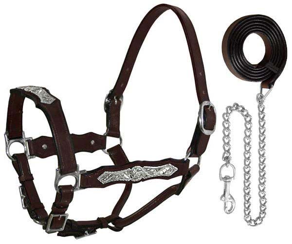 Tahoe Silverado Dakota Show Halters with Lead
