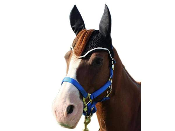 Paris Tack Premium Show Crochet Horse Fly Veil Bonnet with Forelock Opening and Soft Knit Ears