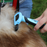 products/Deshedding_Comb_Pet_Lifestyle_Brushing_2_99-1004.png