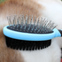 products/Grooming_Brush_Double_Sided_Pet_Lifestyle_Close_Up_99-1002.png