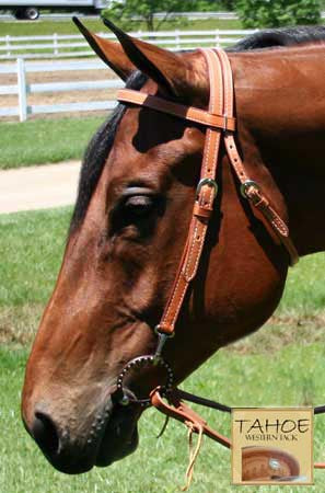 Tahoe Double Duty Training Browband Headstall with Clips