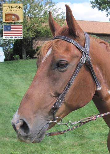 Tahoe Tack USA Leather Leaf Tooled Western Browband Headstall