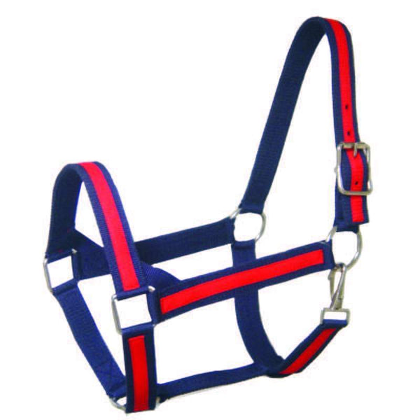 Derby Originals Heavy-Duty Triple Layer Two-Tone Nylon Draft Horse Halters - Closeout