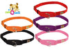 No Slip Adjustable Martingale Dog Collar by cuteNfuzzy® BOGO