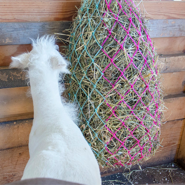 "Derby Originals 42"" Cotton Candy Slow Feed Hanging Hay Net for Horses"