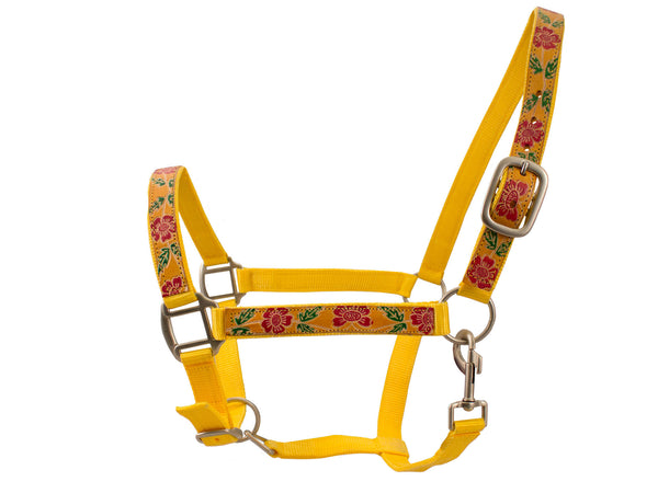 Derby Nylon Halter Adjustable with Hand Painted Leather Overlay