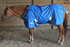 products/Winter_Horse_Turnout_Blanket_1200D_Triple_Gusset_Lifestyle_2_80-8040V2.png