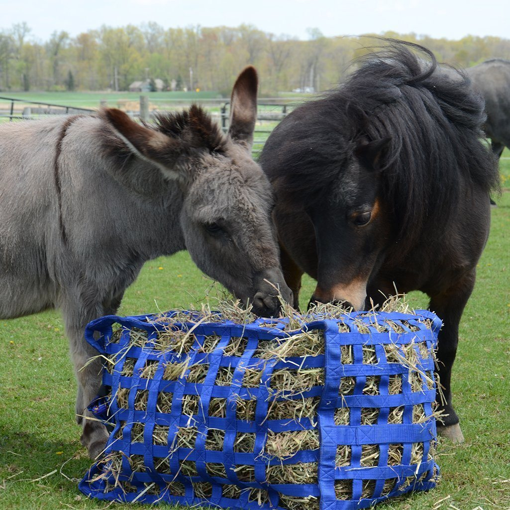 Derby Originals Super-Tough Patented Four Sided Slow Feed Horse Hay Bag with One Year Limited Manufacturer/'s Warranty