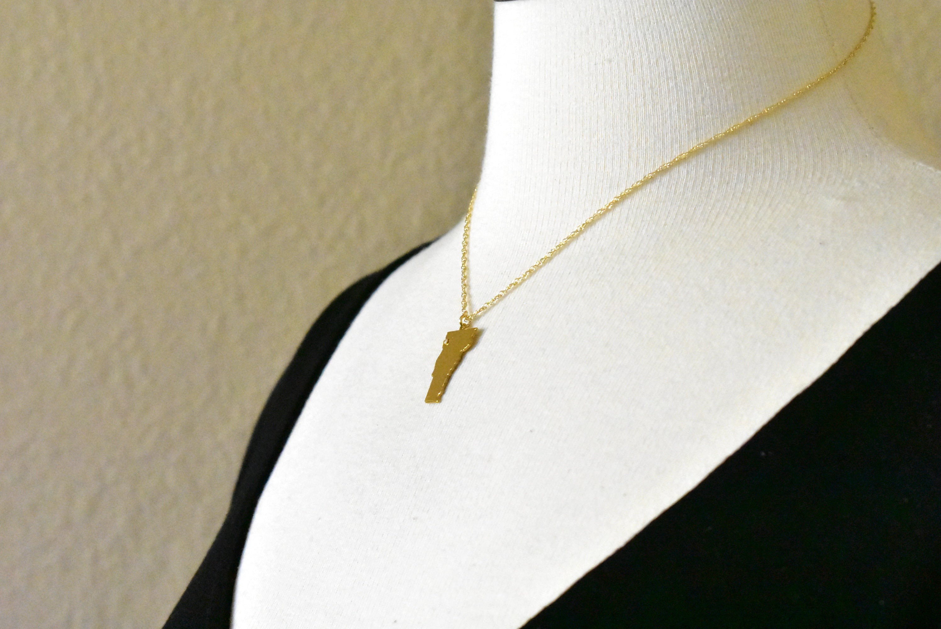 14k Gold 10k Gold Silver Vermont VT State Map Diamond Personalized City Necklace