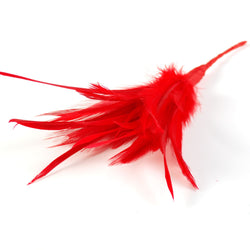 red biot and hackle feathers