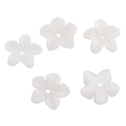 Freshwater Shell Flower Beads 10mm, Pack of 5