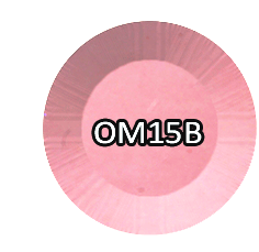 Chisel Nail Art - Ombre Powder - OM15B - 2oz.