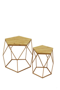 Contemporary Zurich Coffee Tables Set of 2