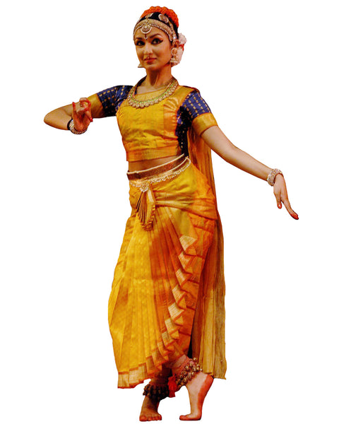 Yellow And Blue Folk Dance Dress