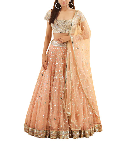 Pastel Peach Raw Silk Mirror Embroidered Lehenga Choli
