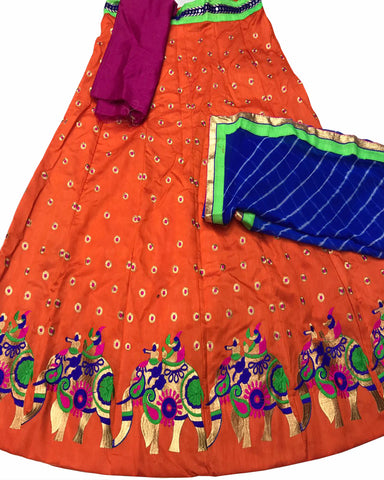 Orange Color Elephant Border Banglori Silk Lehenga