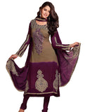Aesthetic Brown & Eggplant Salwar Kameez