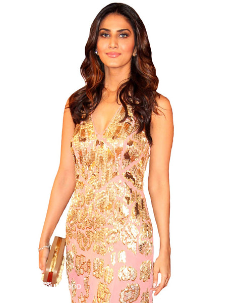 Bollywood Celebrity in Light Pink Long Dress