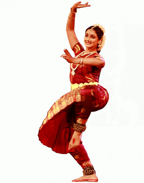 Bharatnatyam Brown Color Dance Costume