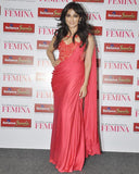Chitrangda Pink Heven Dress