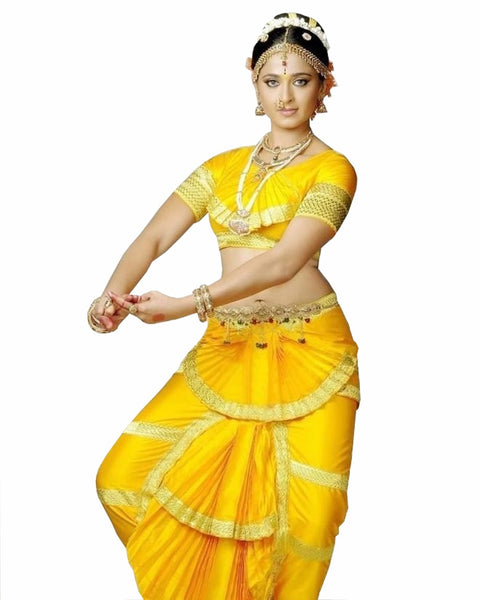 Bharatnatyam Black Orange Dance Costume
