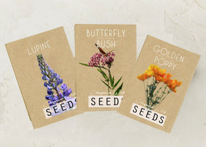 Wildflower Seed 3-Pack