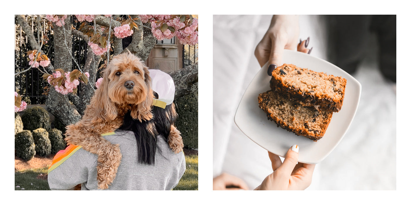 Botkier blog mothers day banana bread
