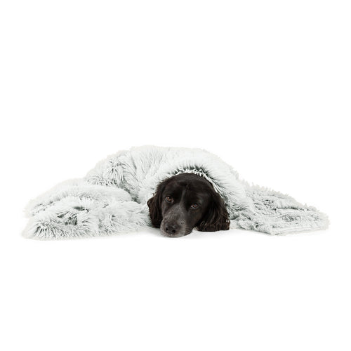Shag Pet Throw Blanket Frost 40x50