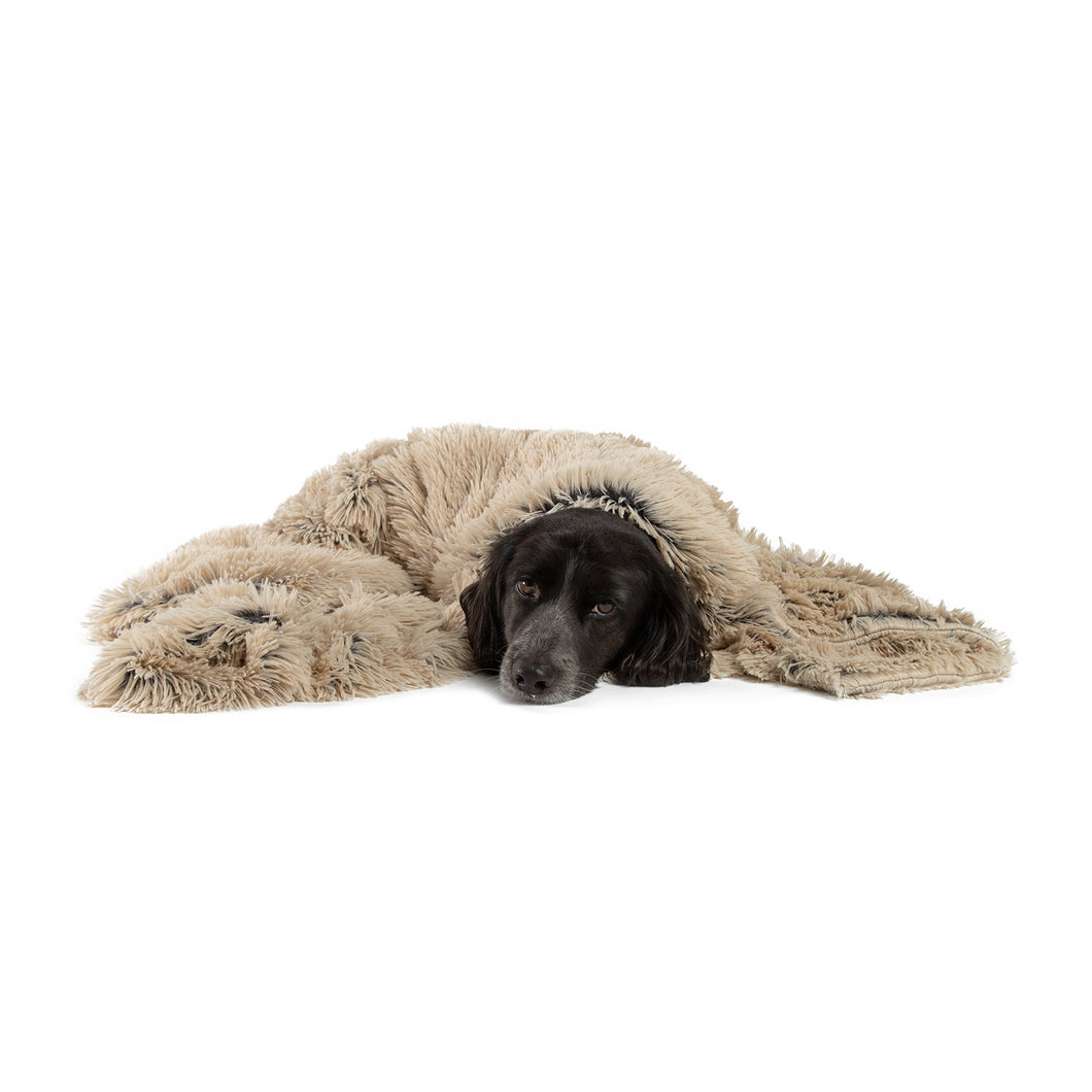 Shag Pet Throw Blanket Taupe 40x50