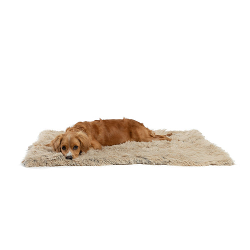 Shag Pet Throw Blanket Taupe 30x40