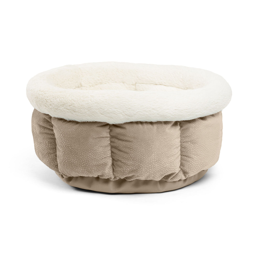Ilan Cuddle Cup Wheat