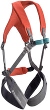 Black Diamond Momentum Harness - Kid's Octane