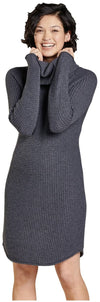 Toad&Co Chelsea Turtleneck Dress - Women's