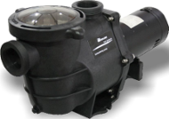 1.0 HP Inground Pool Pump