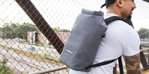 Backpack cooler for travelers