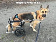 Donation Pack: Project Eli