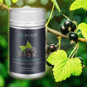 Aviant Blackcurrant Extract - 30 Capsules
