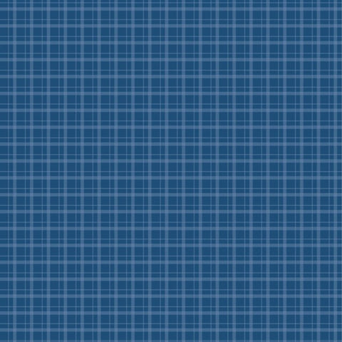 Foundation Paper - Plaid / Dots - Blue