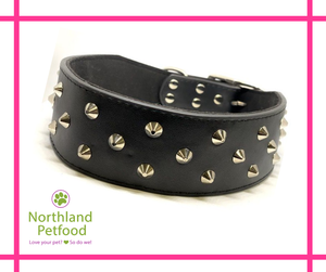 XL Leather Collar- 3 Row Studded